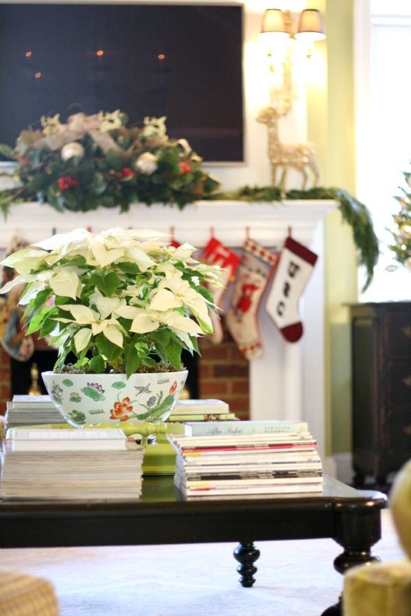 Coffee-Table-filled-with-books-and-gorgeous-white-poinsettia