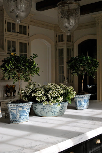 The Enchanted Home - Magnolia topiaries