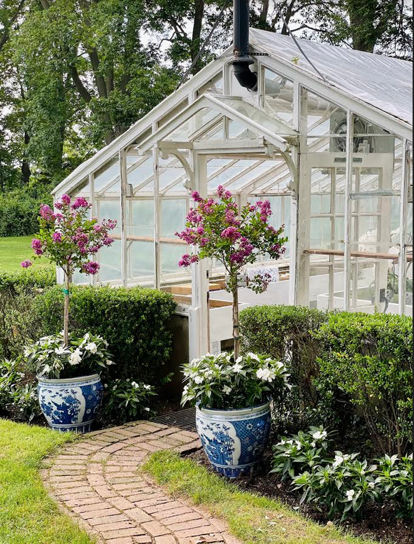 The story of a little greenhouse……