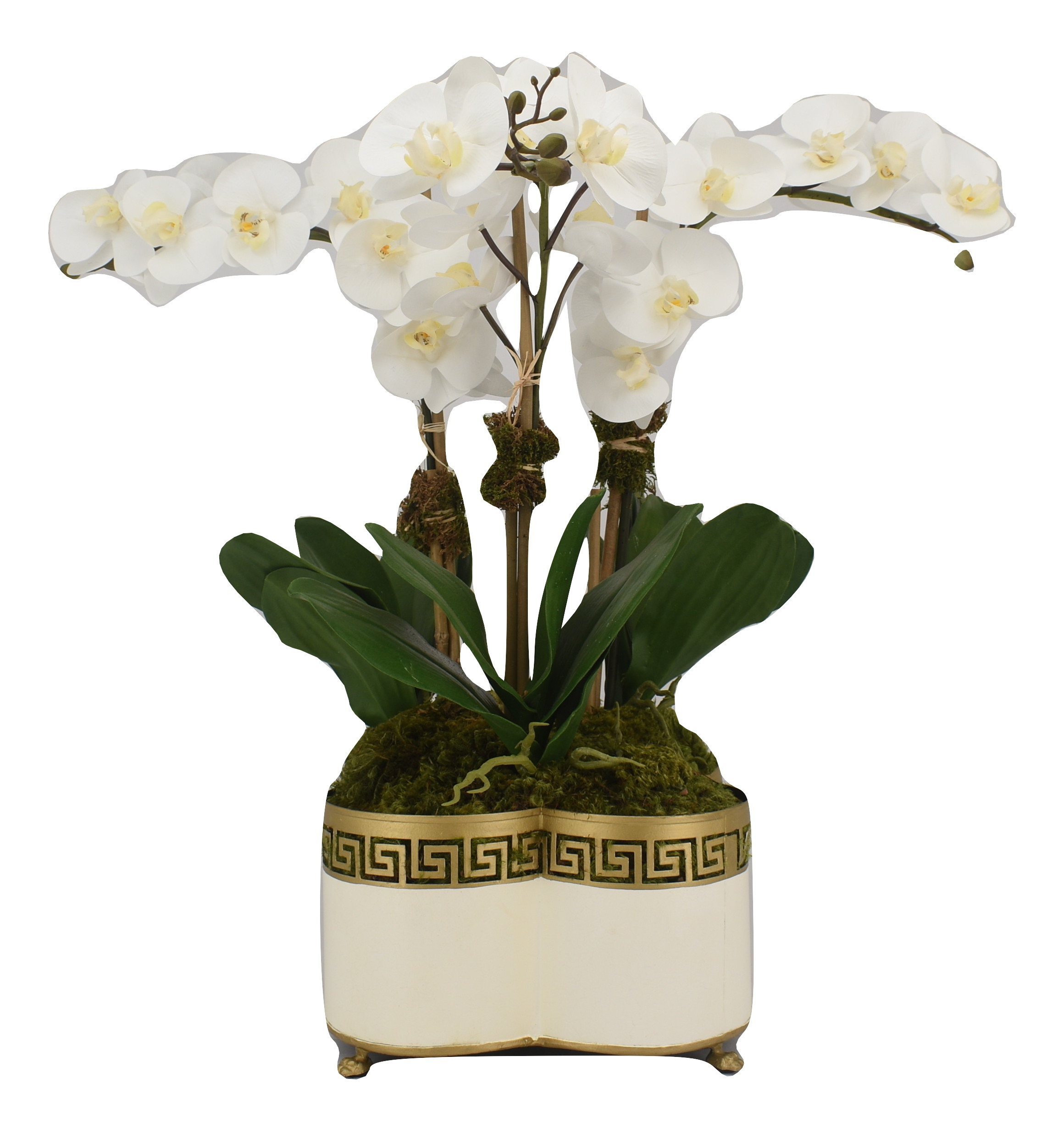 Beautiful three stem lifelike orchid in ivory fretwork planter