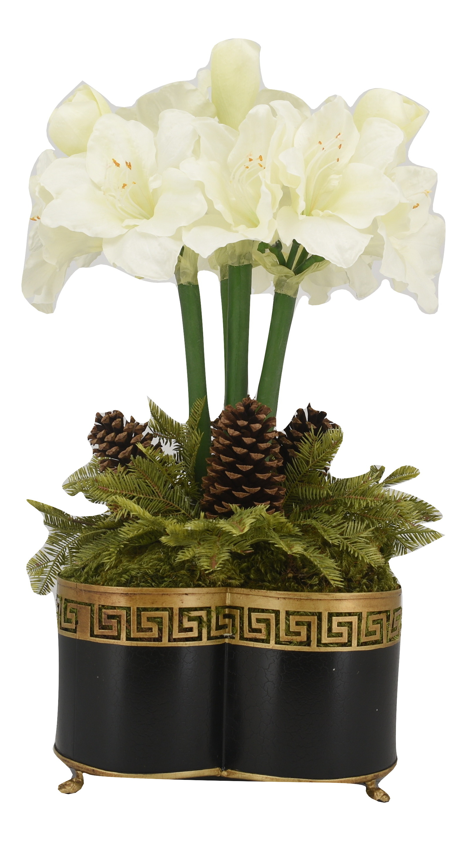 Spectacular four stem white amaryllis in black Greek key quatrefoil planter