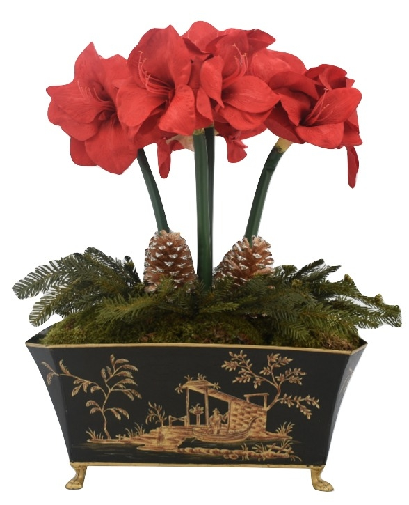 Holiday Amaryllis Plant