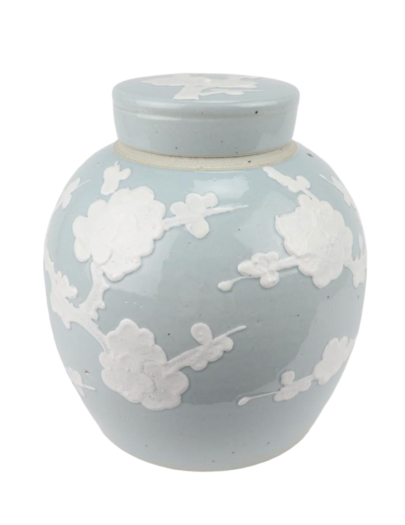 Incredible new flat top pastel ginger jar in pale blue