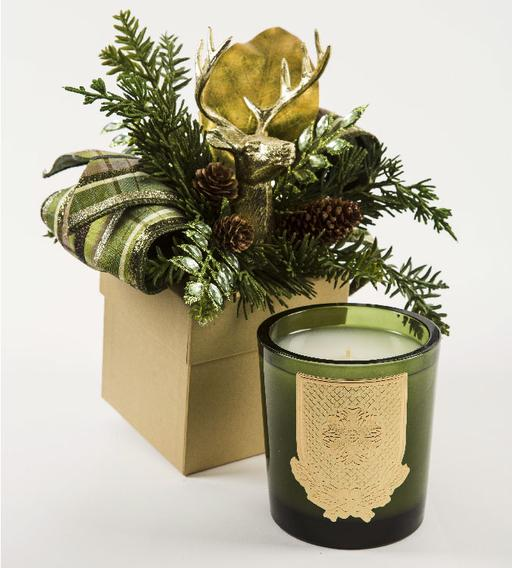 Beautiful Noble Fir holiday 14 oz candle