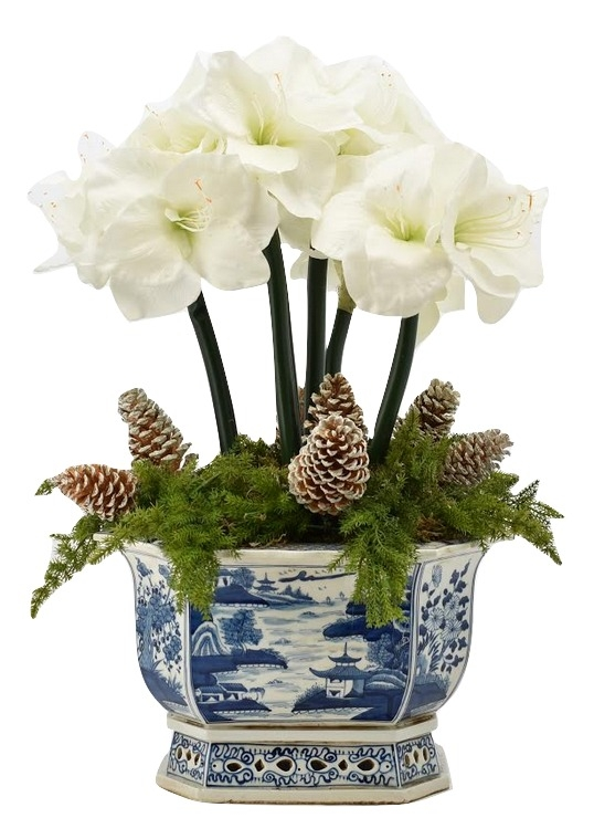 Fabulous 5 stem White Amaryllis and Pinecone