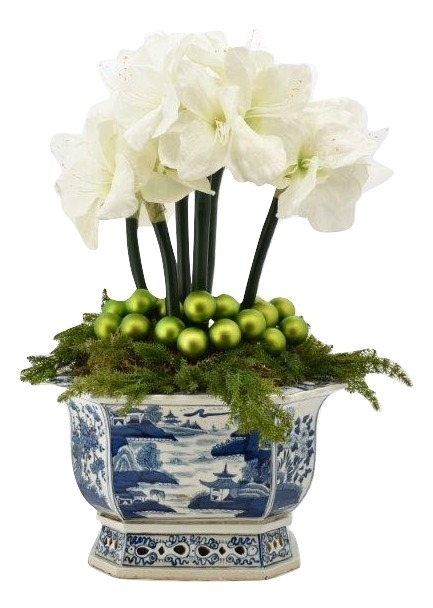 Gorgeous 6 stem white amaryllis, pinecone with holiday greens arrangement