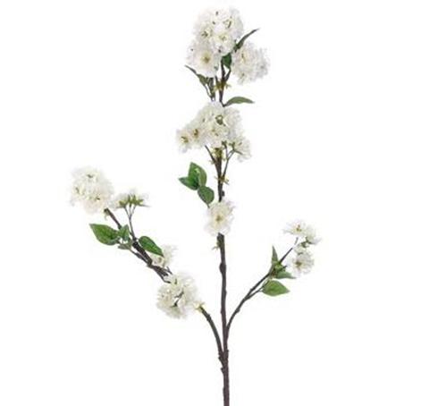 Fabulous tall 50 white cherry blossoms box of dozen mightylinksfo